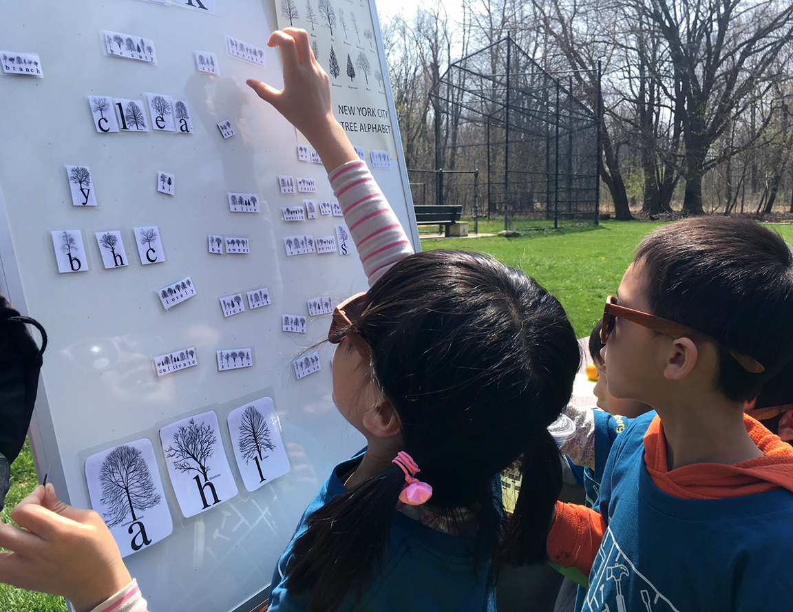 Sharing the  New York City Tree Alphabet  with young members of Bloomberg during a tree planting session with the NYC Parks Department in Pelham Bay Park, Bronx, NY, April 28, 2018.
