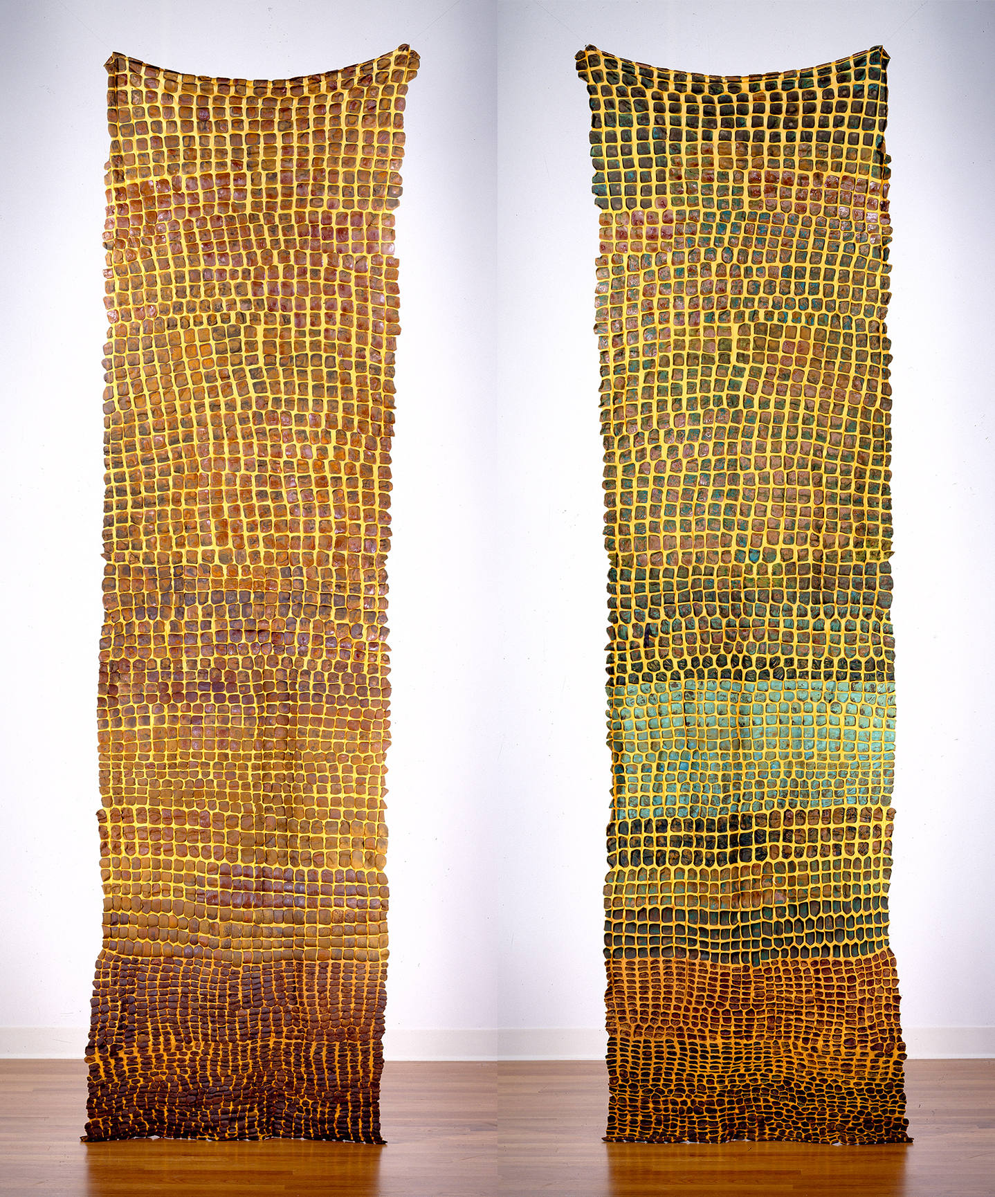 "Generations Side I (LEFT) Generations Side II (RIGHT)  nylon, iron, pigment  132"" x 32"" 2000"