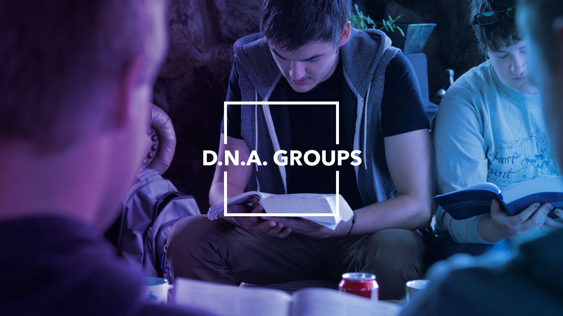 DNA GROUPS.jpg