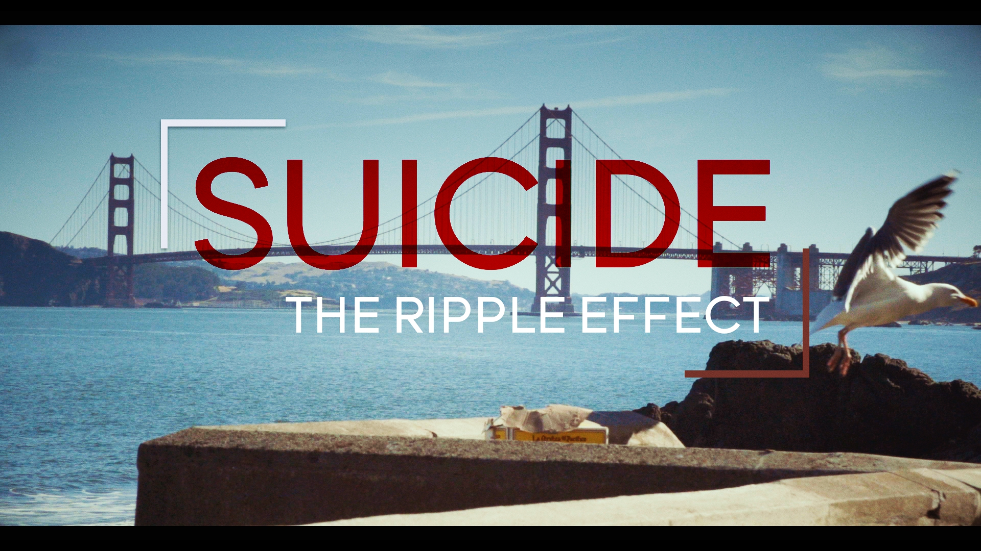 "DOCUMENTARY: SUICIDE THE RIPPLE EFFECT   ""Suicide: The Ripple Effect"" is a feature length documentary film and MOVEMENT, currently in production, focusing on the devastating effects of suicide and the tremendous positive ripple effects of advocacy, inspiration and hope that are helping millions heal & stay alive.   The film highlights the journey of Kevin Hines, who at age 19, attempted to take his life by jumping from the Golden Gate Bridge. Today Kevin is a world-renowned mental health advocate, motivational speaker and author who travels the globe spreading a message of hope, recovery and wellness.   The film chronicles Kevin's personal journey and the ripple effect it has on those who have been impacted by his suicide attempt and his life's work since.  In addition, the film highlights the stories of individuals and families who are utilizing their personal tragedy to bring hope and healing to others."