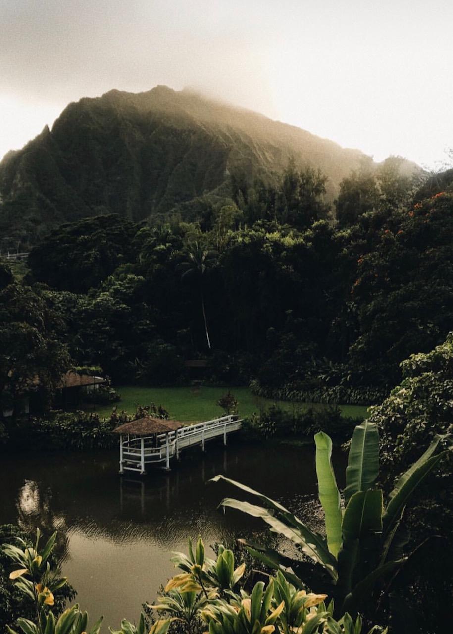 Haleiwa Joe's Haiku Gardens
