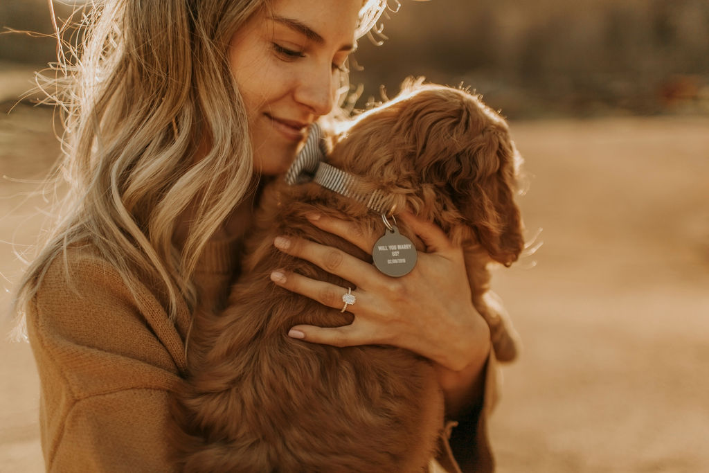 surprise proposal with labradoodle puppy_6721.jpg