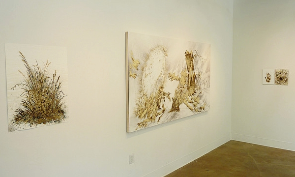 Gallery | IN THE BRACKEN: SARAH A. SMITH Project |SHAWN BITTERS April 27 – June 9, 2013