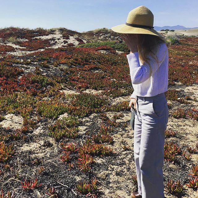 Scoping seaside botanicals post studio visit with the lovely Alicia Escott. @alicia_escott #oceanbeachsf