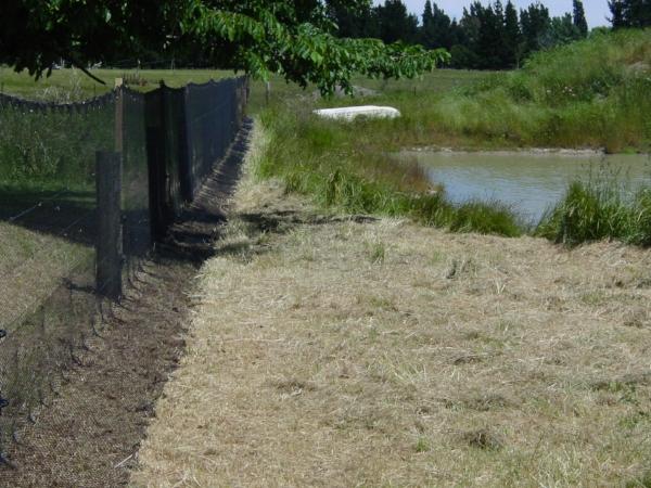 Predator proof fence at Lansdowne Valley