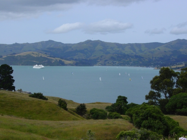 View of Akaroa harbour