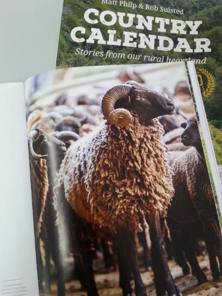 Wyld Country calendar instragram.jpg