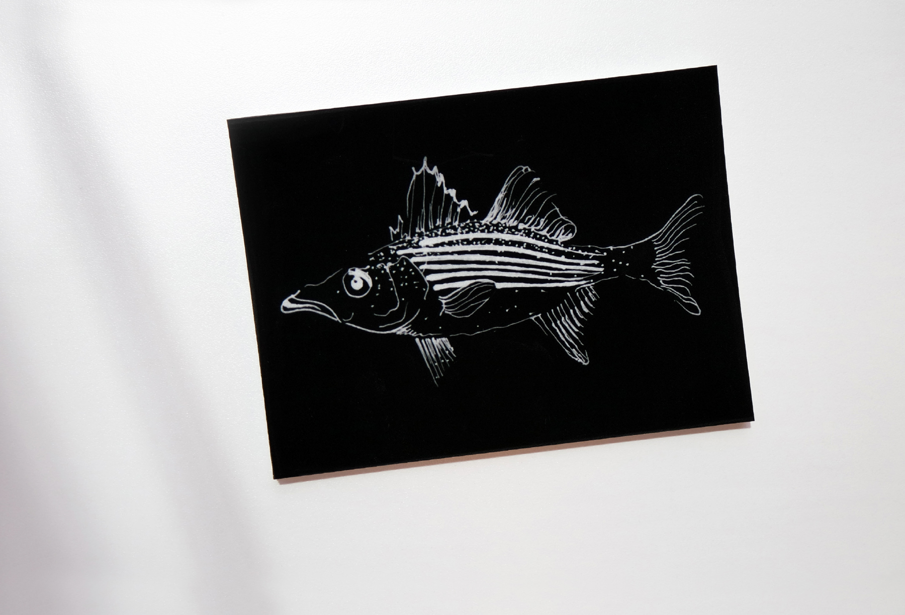 2_fish.jpg