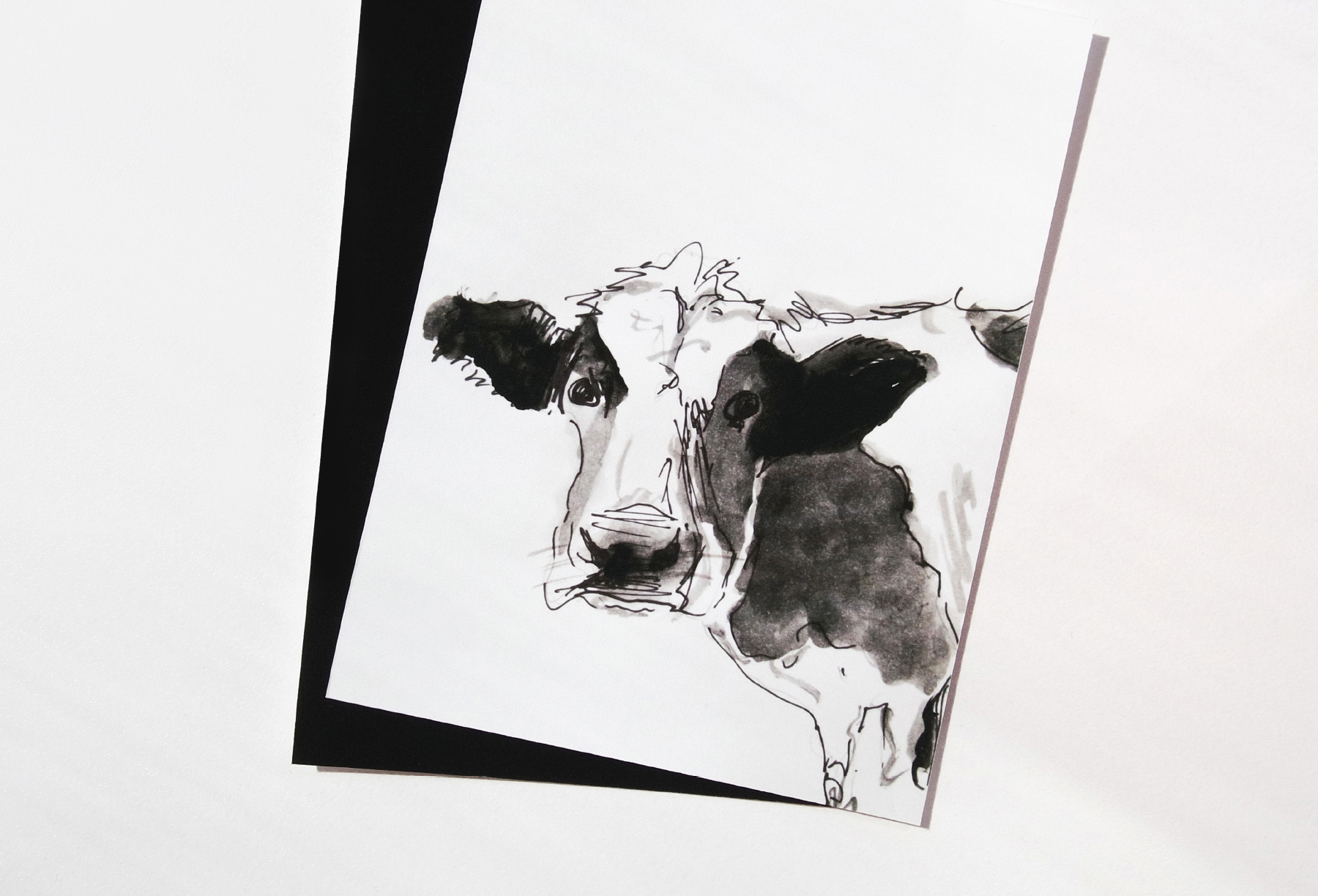 4_cow.jpg