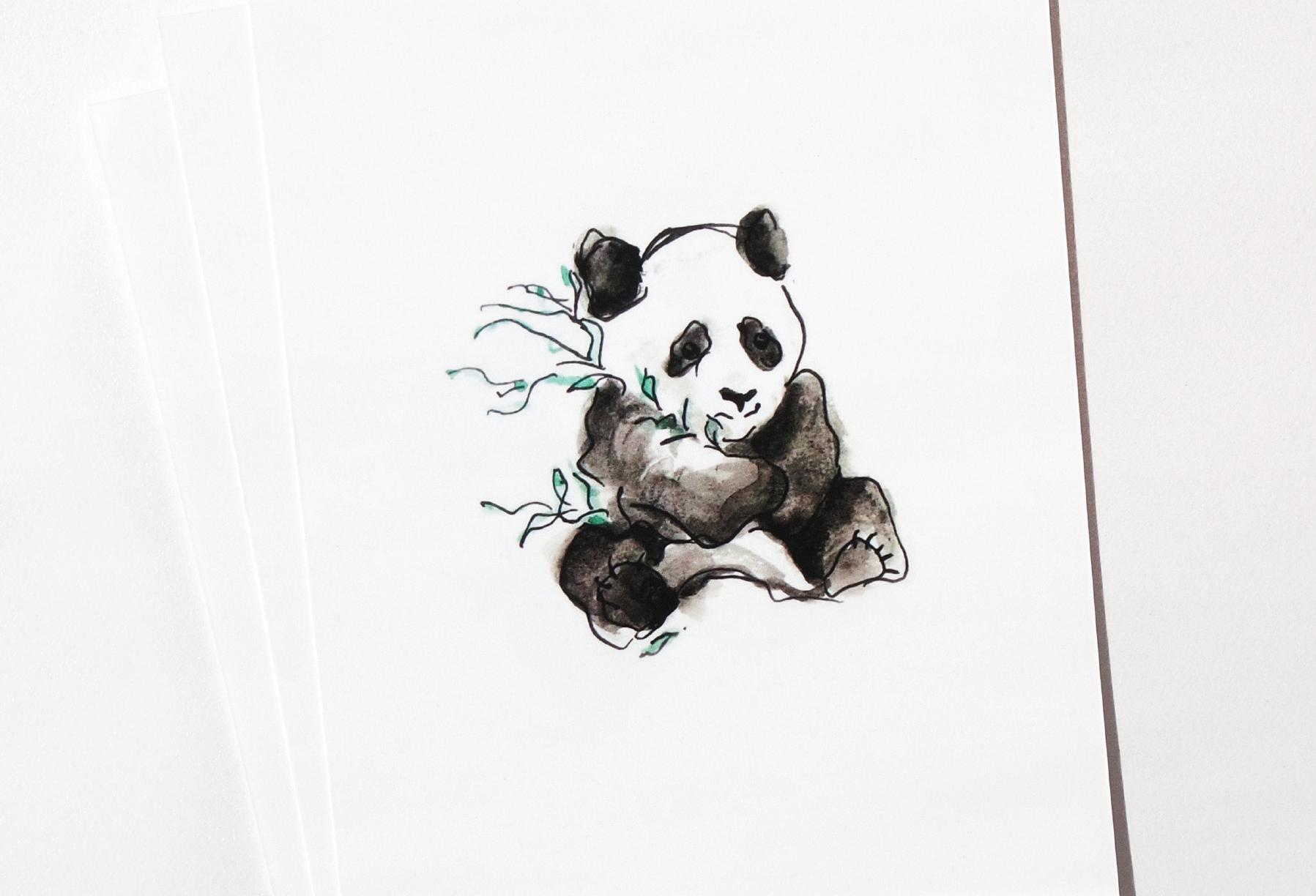 6_panda.jpg