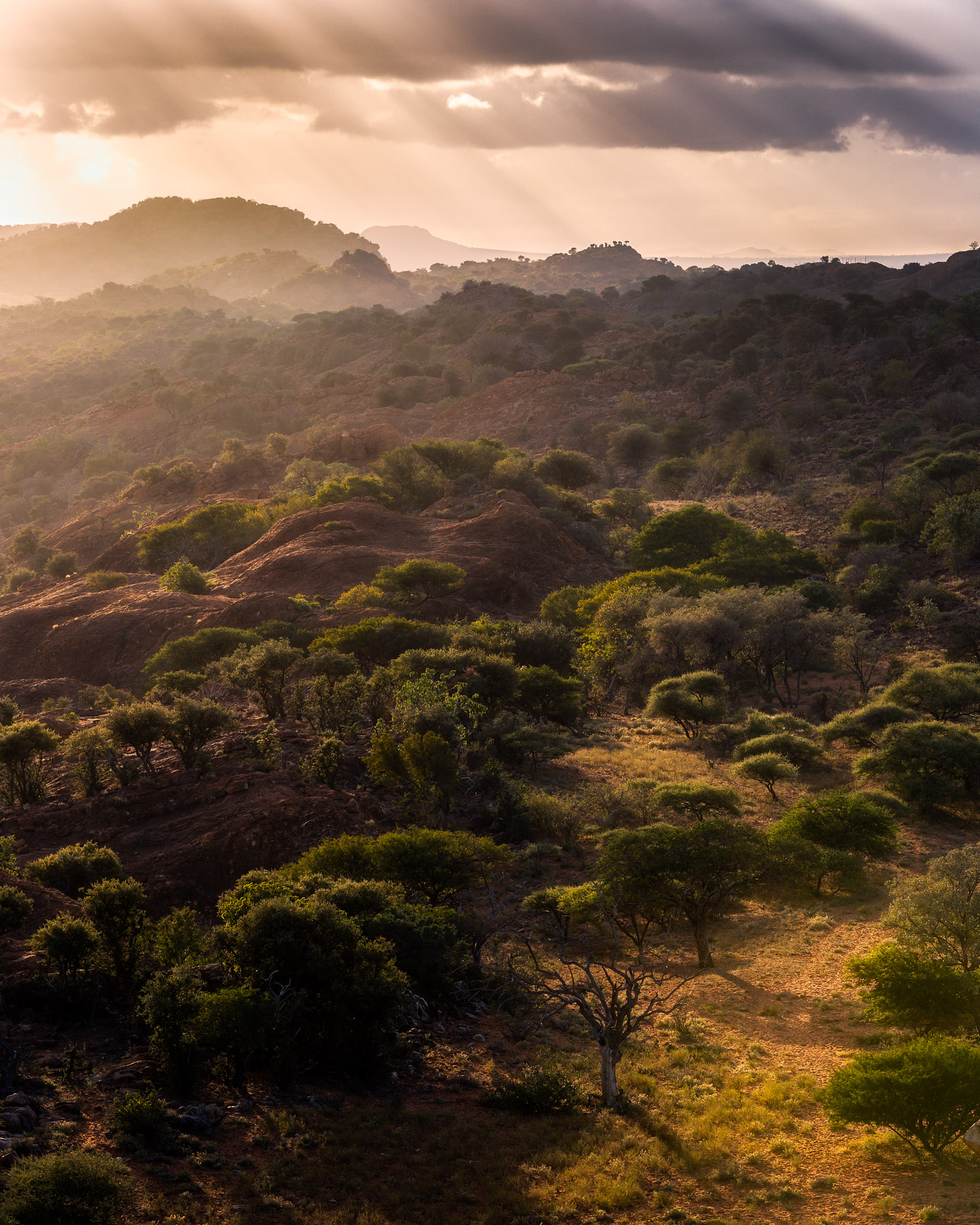 Venda Hills Sunrise - African Landscape photography by Mike O'Leary - Greengraf Photography_.jpg