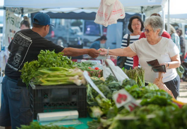 spn-l-farmers-0417-0417_nws_spn-l-farmers-0_23674237_411400.jpg