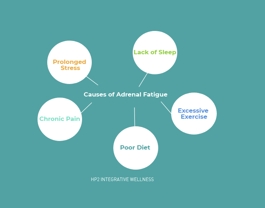 Adrenal Fatigue Causes.png