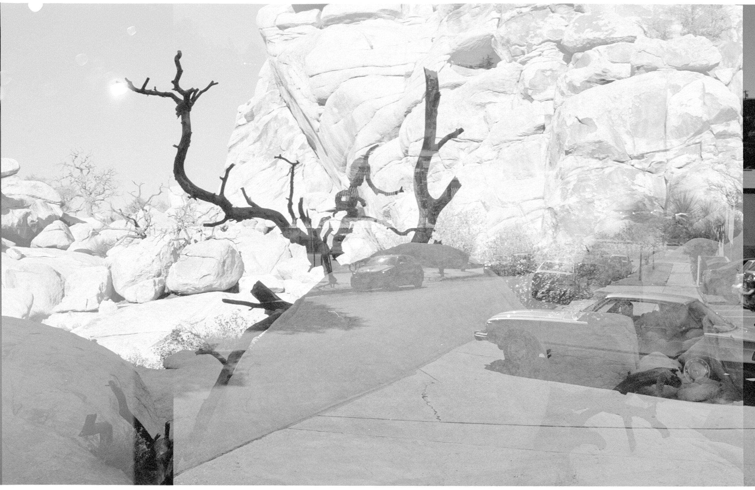 joshua tree, double exposure- trees and cars