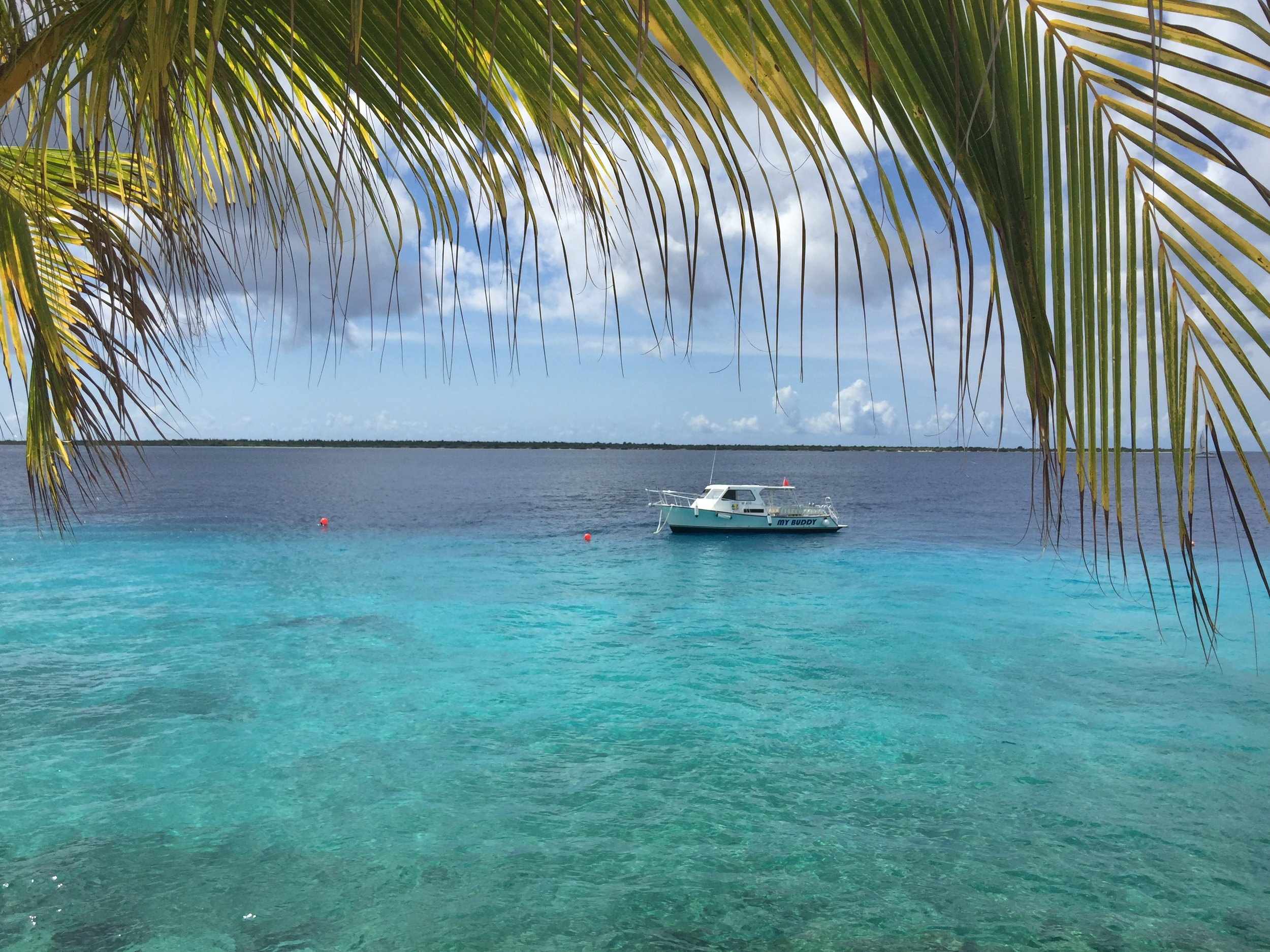 Bonaire is the perfect place to get your scuba diving certification.