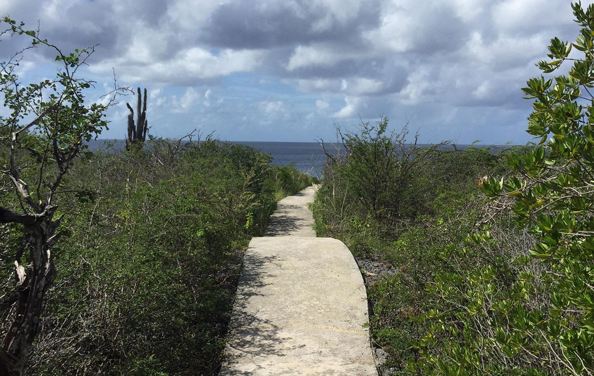 Direct Ocean Access Villa Bonaire