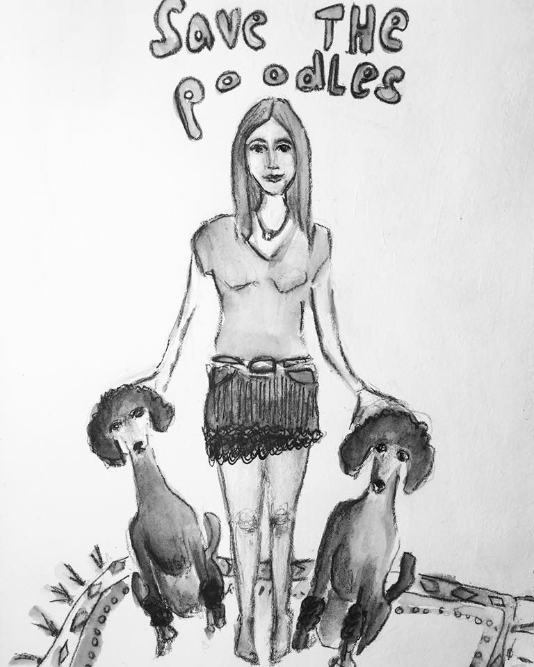 Save the Poodles