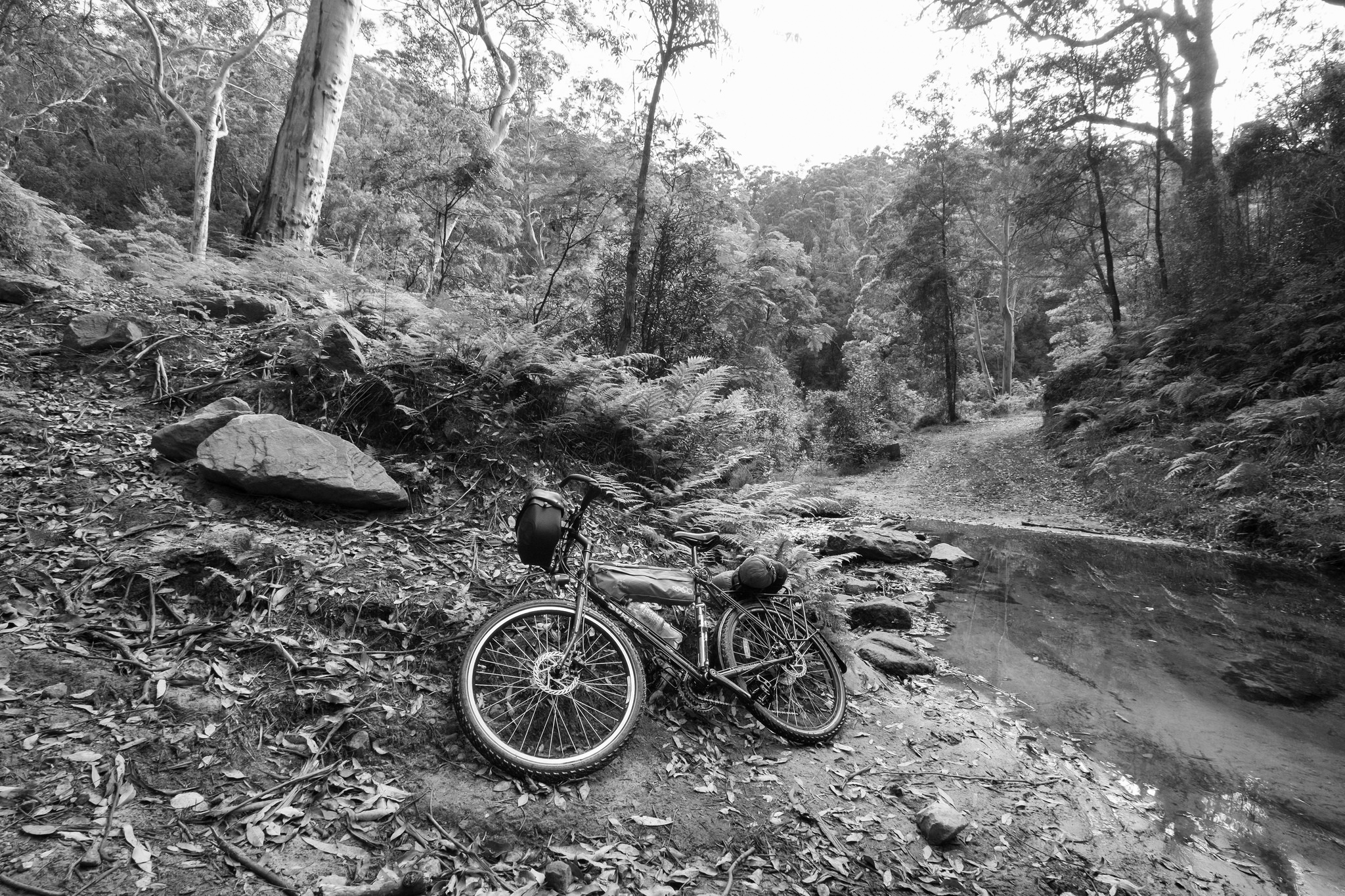 Surly Disc Trucker on Andersons Firetrail, Blue Mountains, Australia