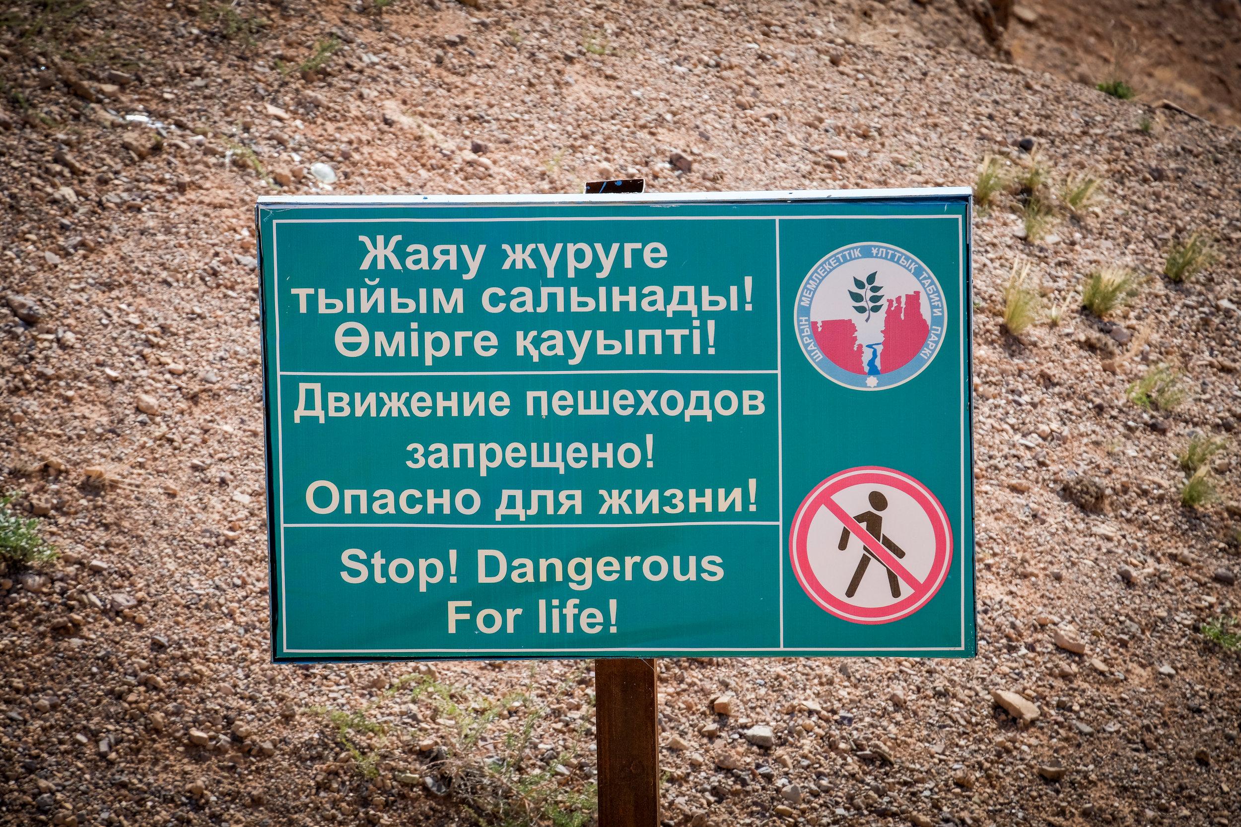 kazakhadds-4912_41736368082_o.jpg