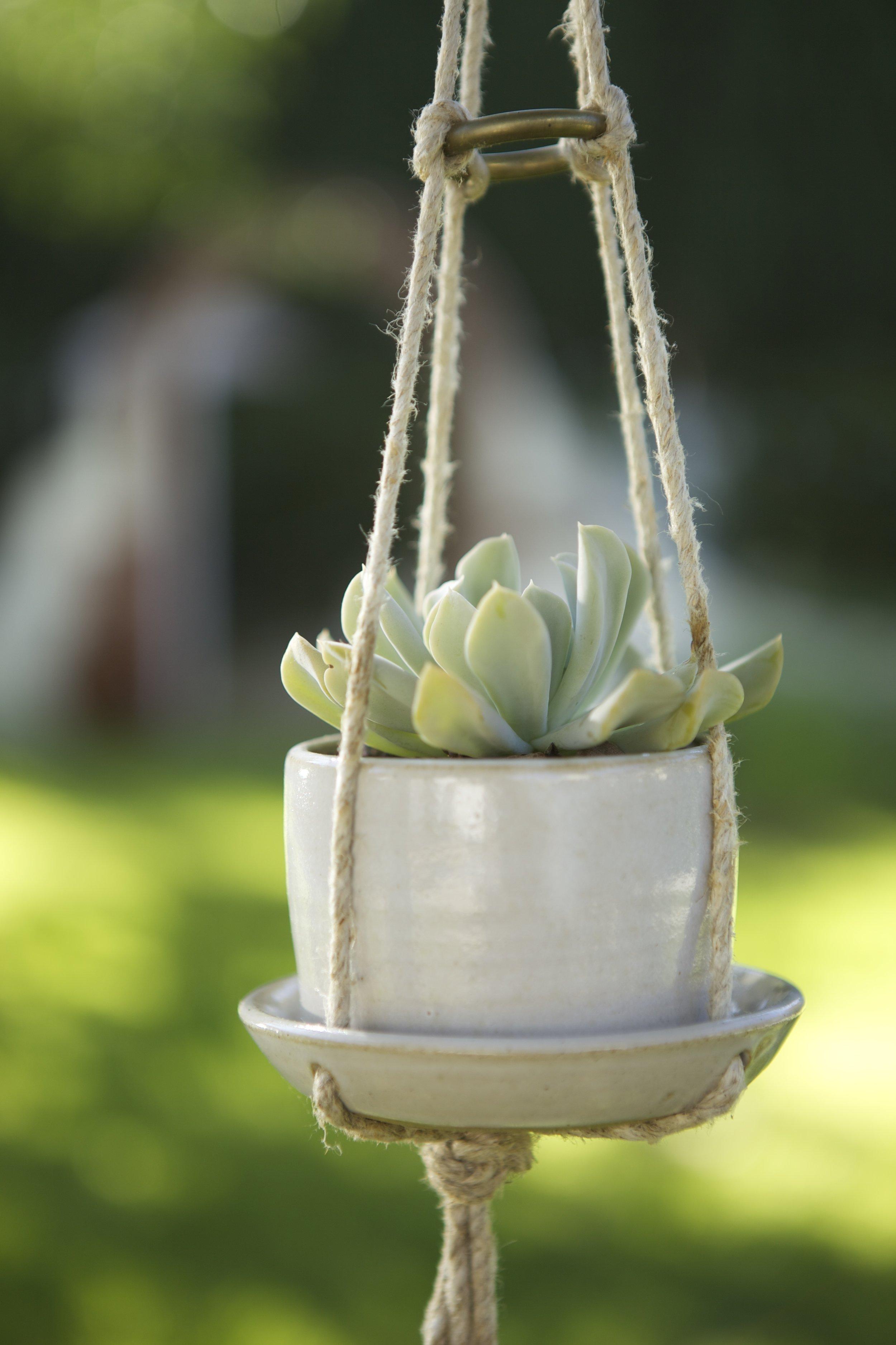 hanging planter pic.jpg