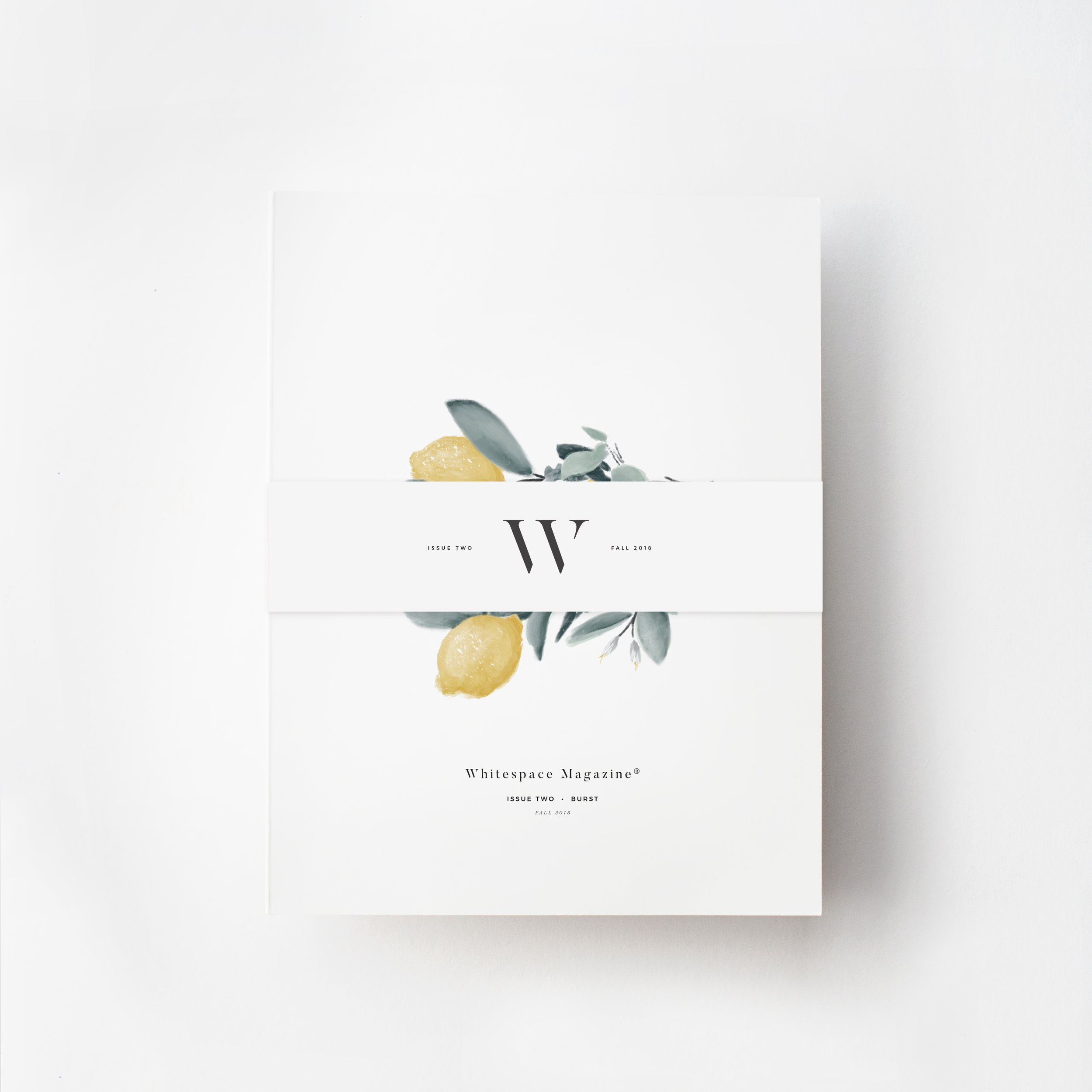 Issue 2 Cover on White with BB.jpg