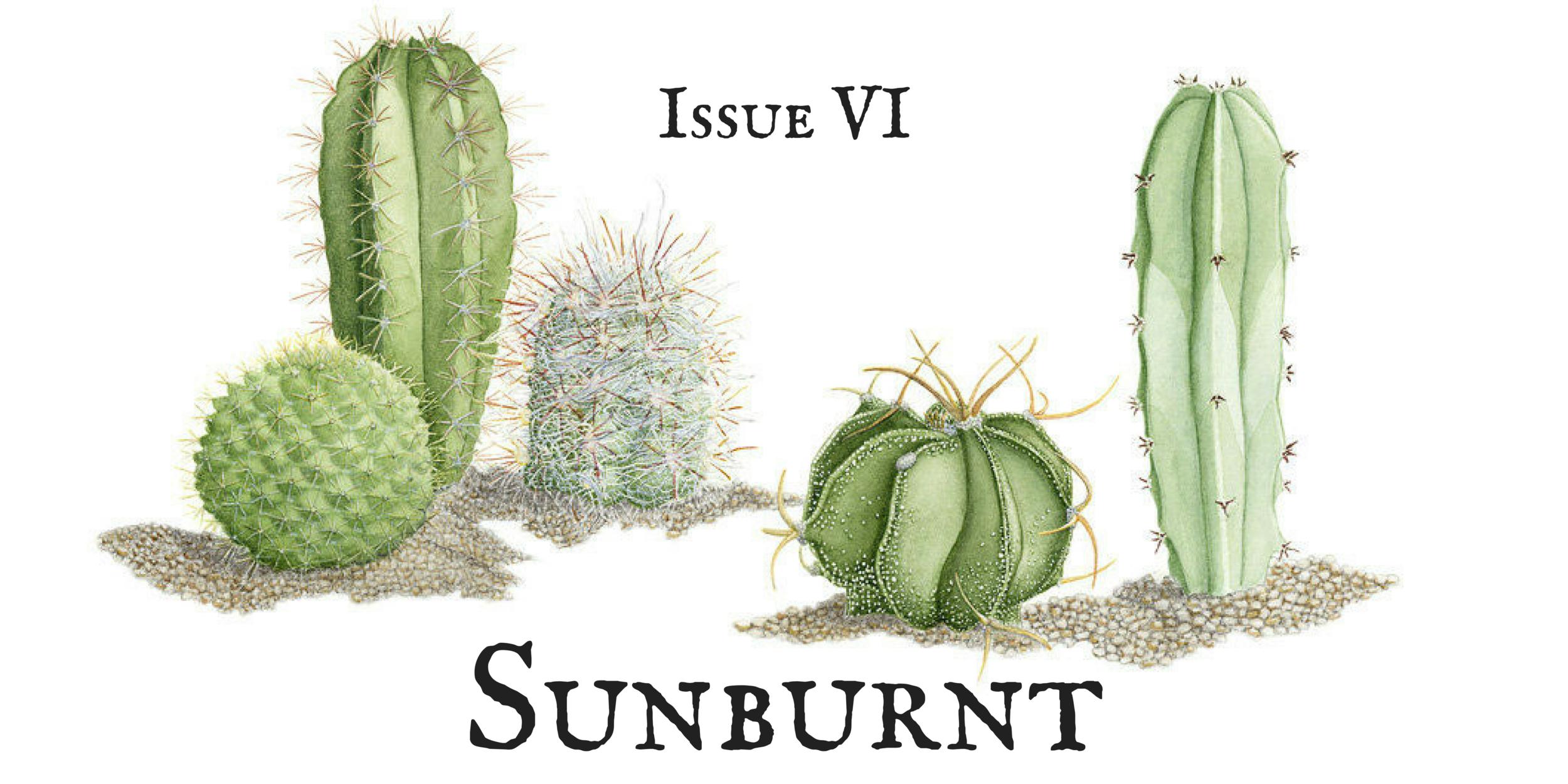 Issue VI- Sunburnt.png