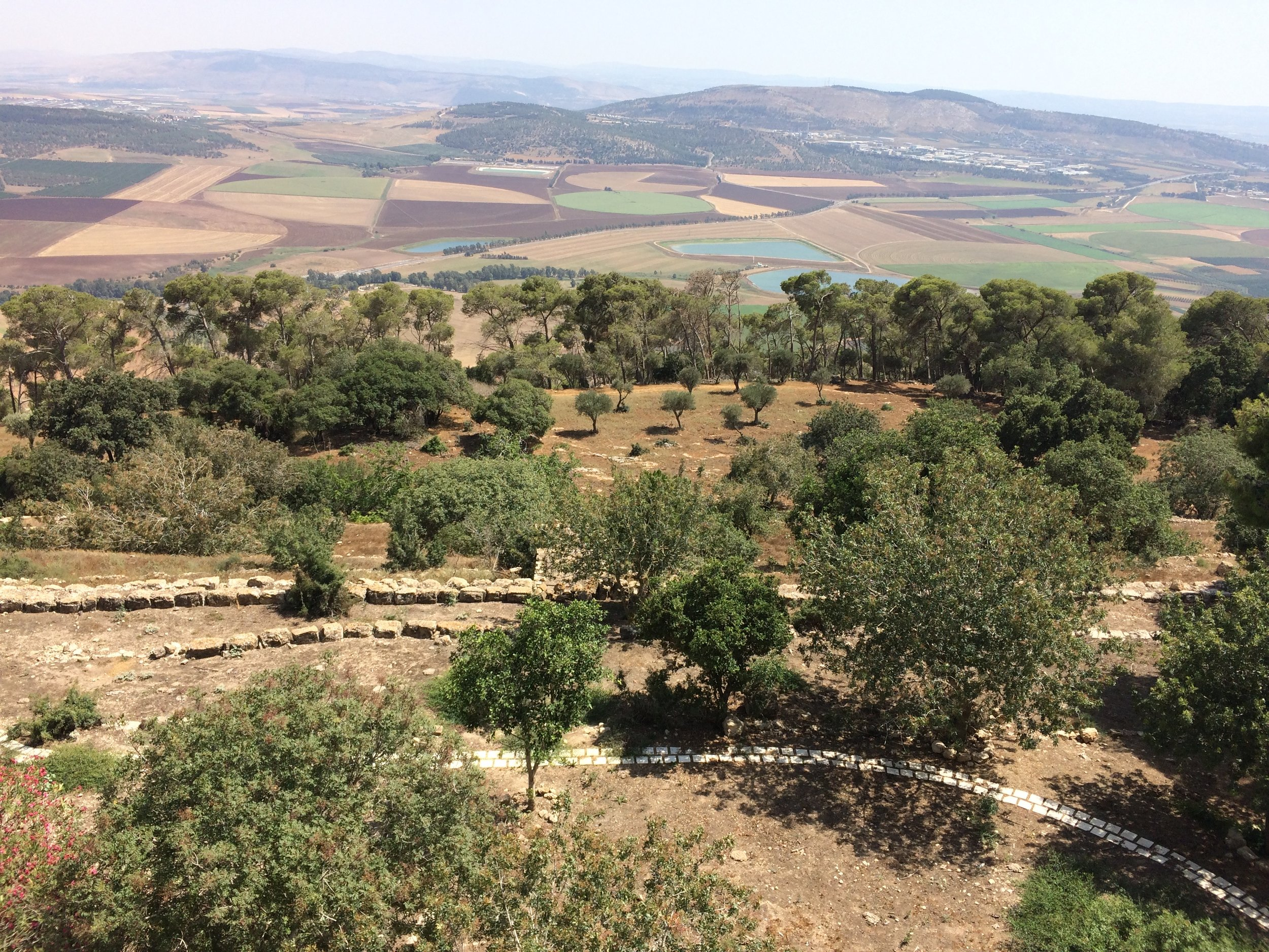 Fertile land of the Valley of Jezreel