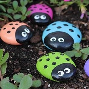 ladybugrocks.jpg
