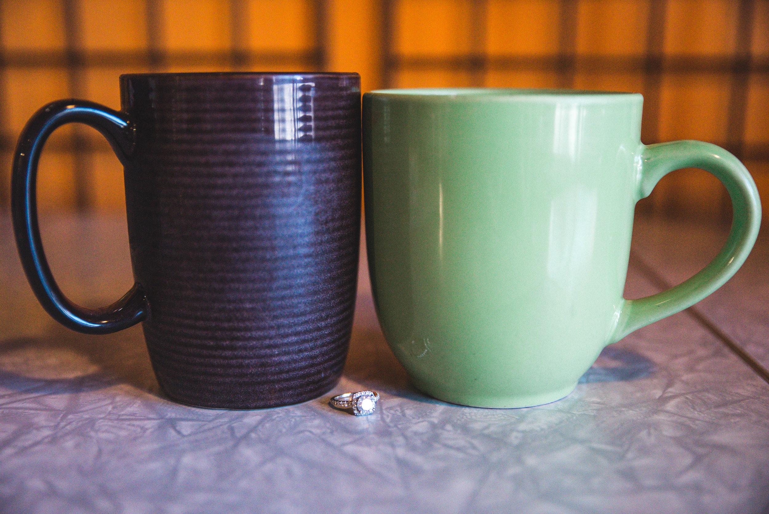 Coffee shop engagement Hopkins MN