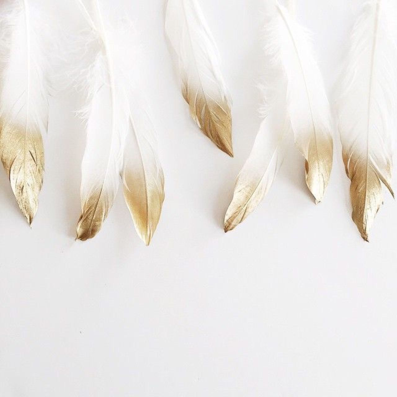 gold tipped feathers .jpg