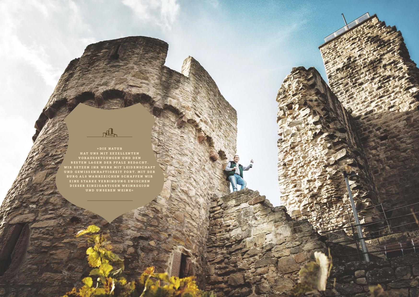 Wachtenburg Castle .jpg