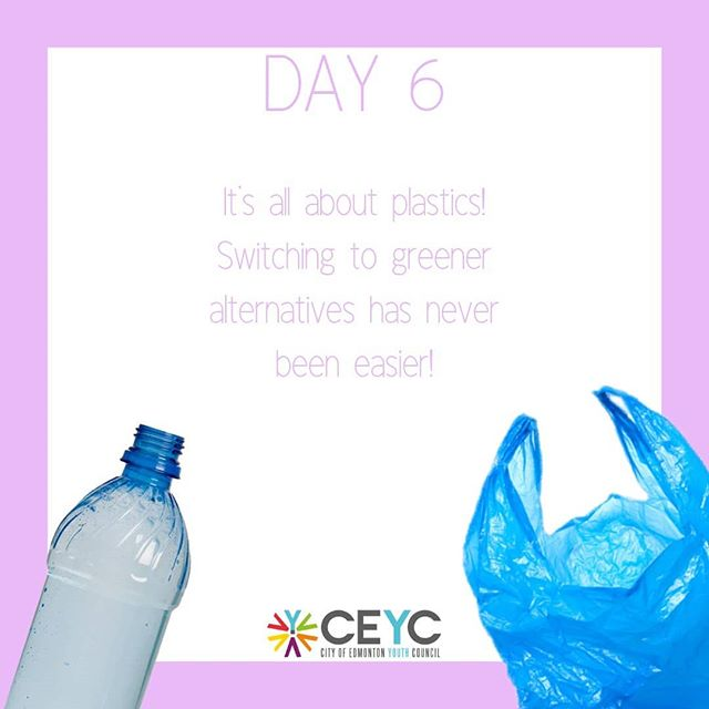 Day 6 is all about plastics! Plastics are something that are integral to our lives, but they can have pretty harmful consequences. When disposed off, they take a long time to biodegrade and instead, they break down into super small pieces over the time. These small pieces can end up in our air and waterways and pose a huge threat to wildlife. They're harmful to humans as well, with the many toxic chemicals leaching out of plastic and are exposed to us, having negative effects on our health.  Reusing plastic usage can be super easy to do, because it's a culmination of little actions that make a difference. -instead of plastic water bottles, use your refillable water bottle. -reusable metal straws can be used in place of plastic straws for drinks. -instead of accepting plastic bags from the store, remember to bring a cloth bag to fill your groceries. -replace plastic toothbrushes and combs with bamboo ones, which take less time to break down at landfills. -when packing lunch, use glass or Tupperware containers instead of sandwich baggies or brown paper bags.