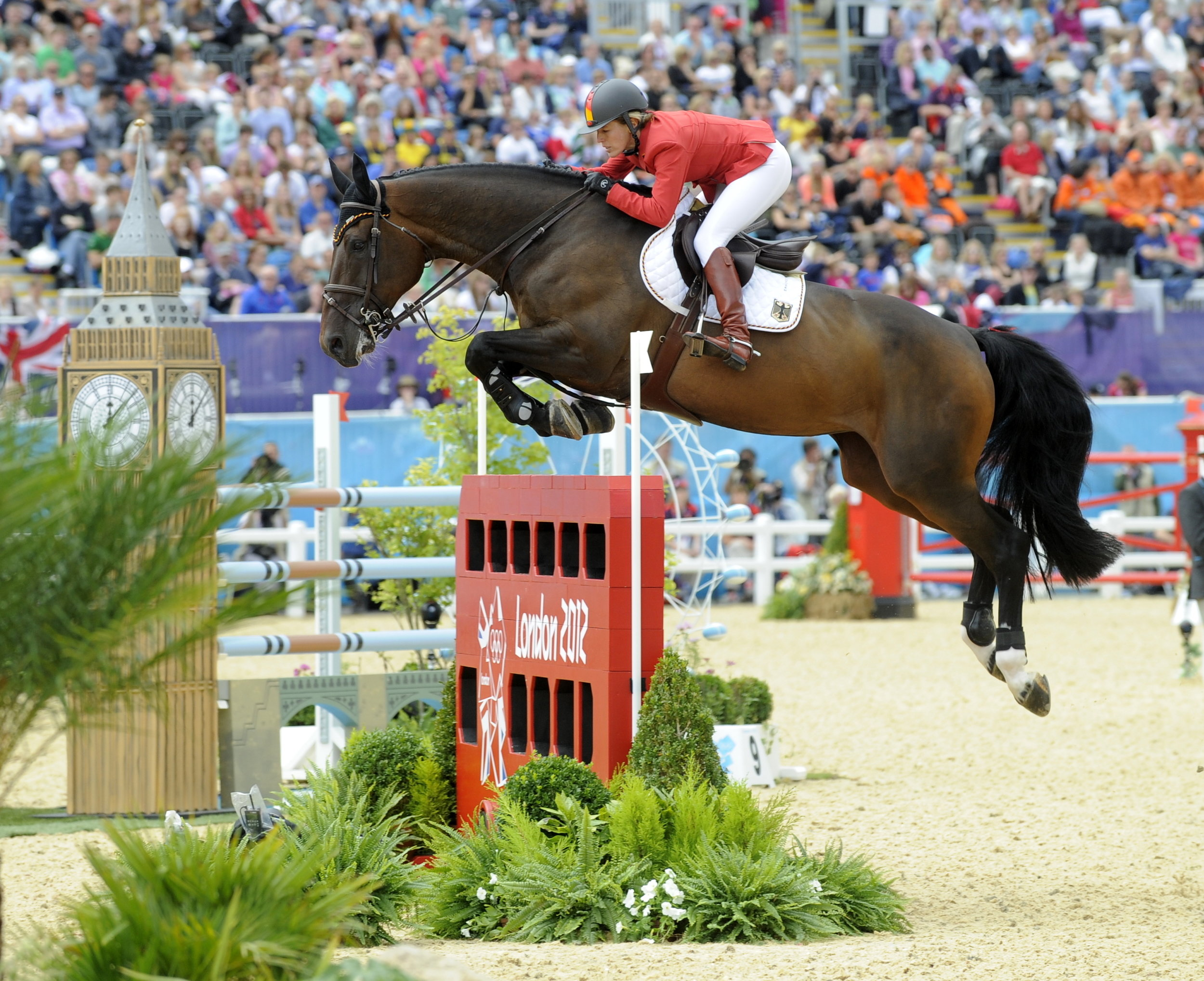 Bella Donna competing in the 2012 London Olympics with her rider    Meredith Michaels-Beerbaum(Germany)