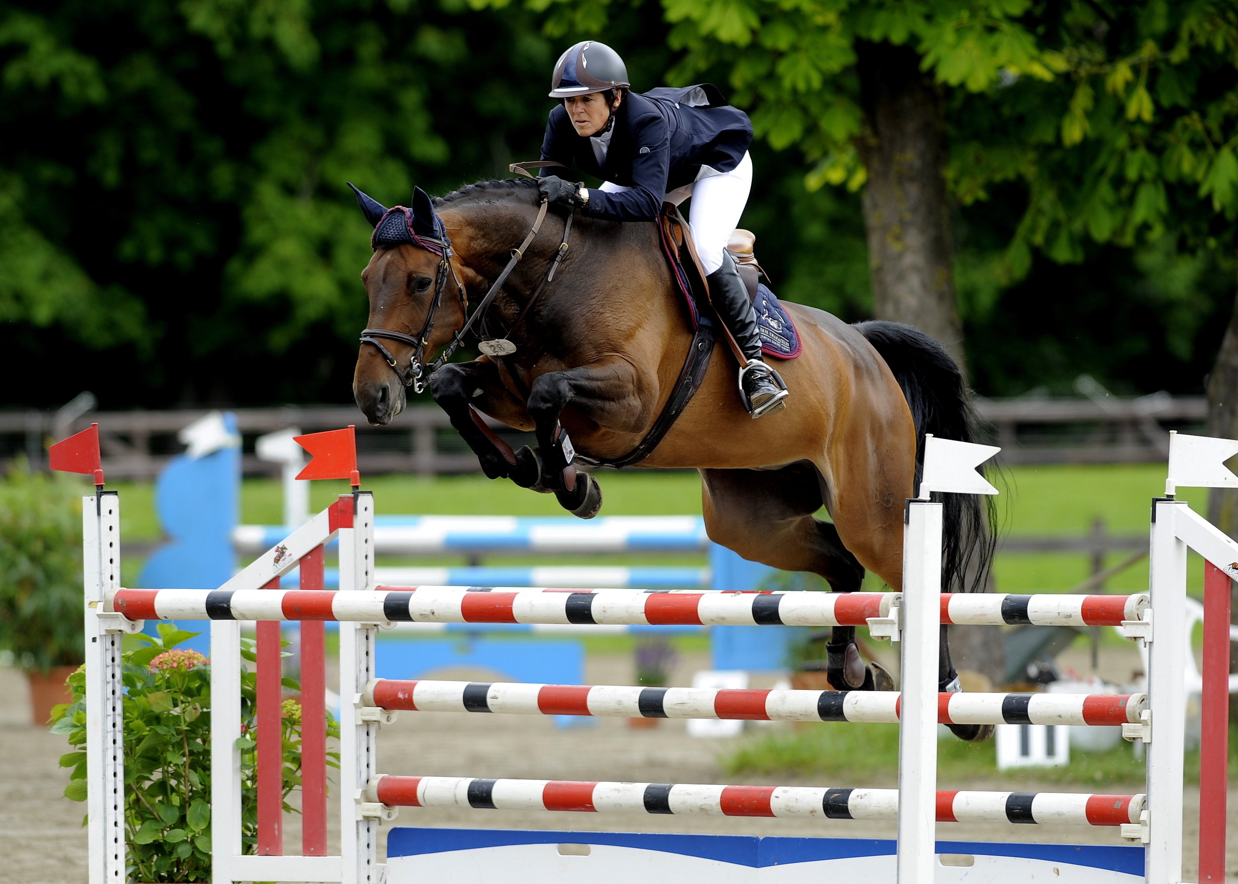 Sinfonie competed successfully in the 2015 European Championships in Aachen with Vladimir Tuganov (Russia)