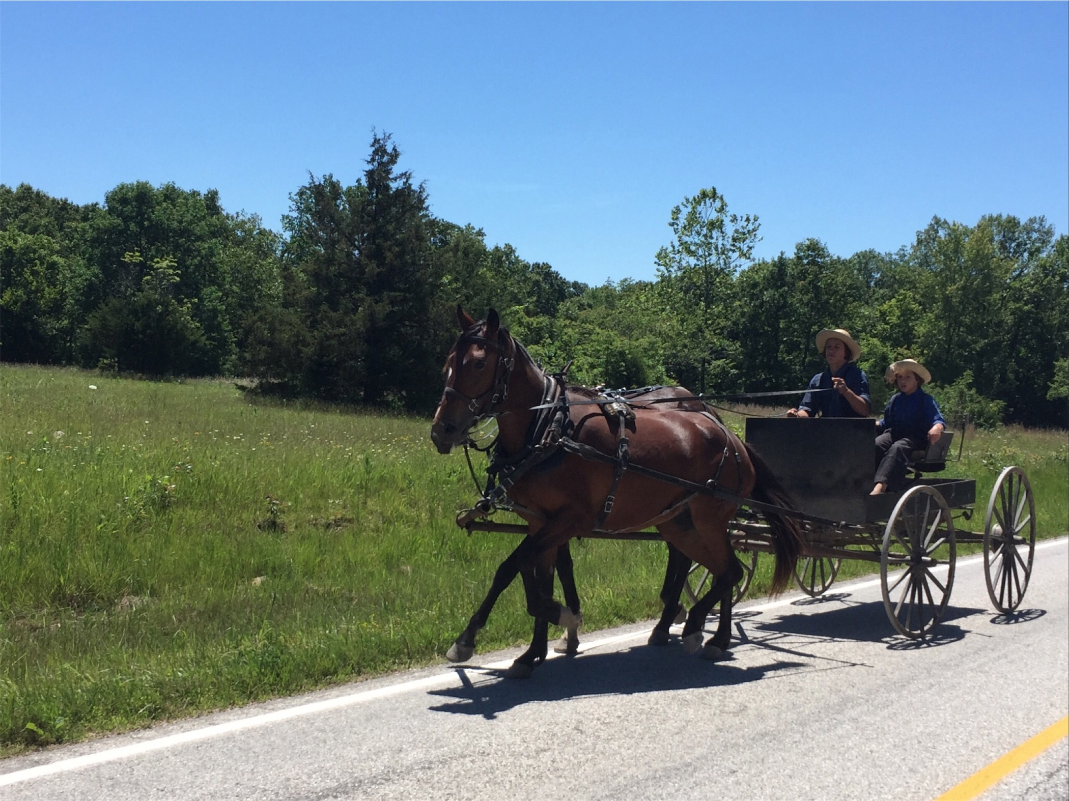 We are still in Amish and Mennonite Country. This buggy passed us heading East.