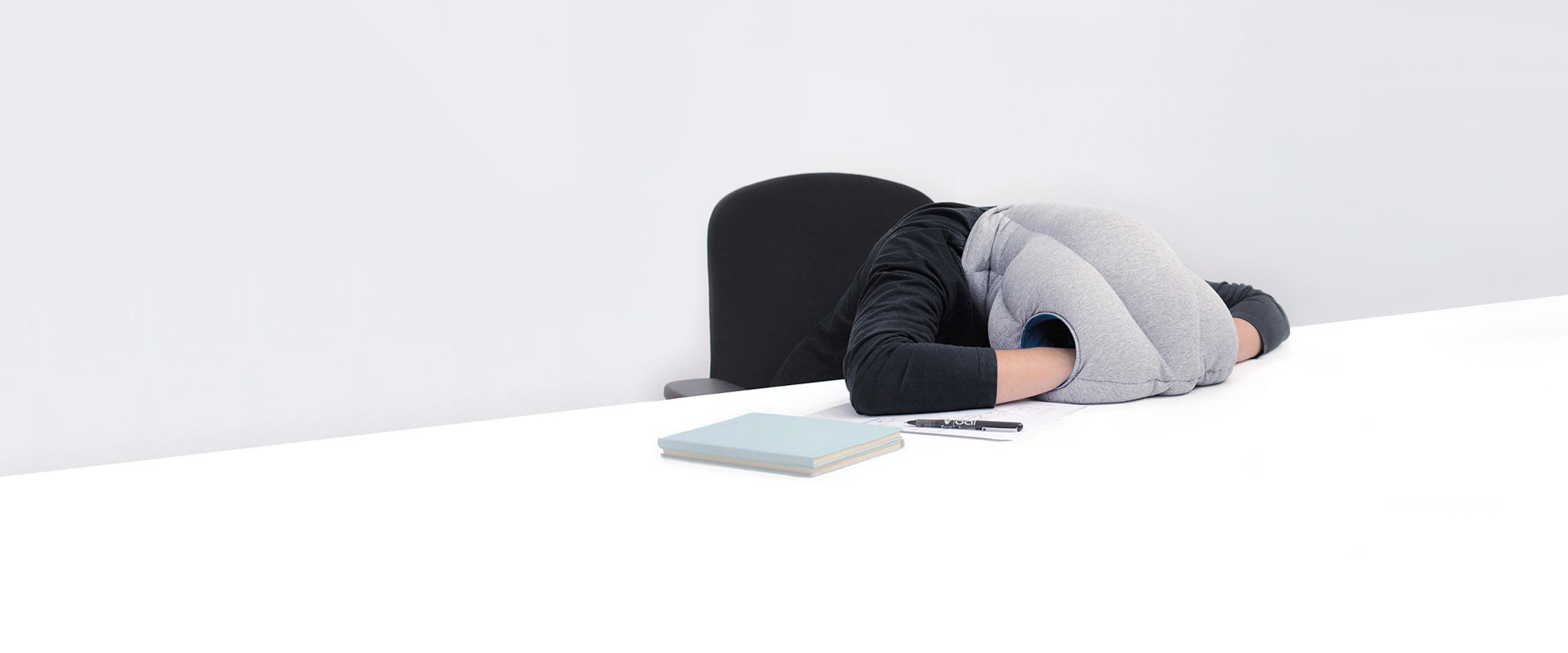 This is actually a thing! Image: OSTRICHPILLOW(R) link  here