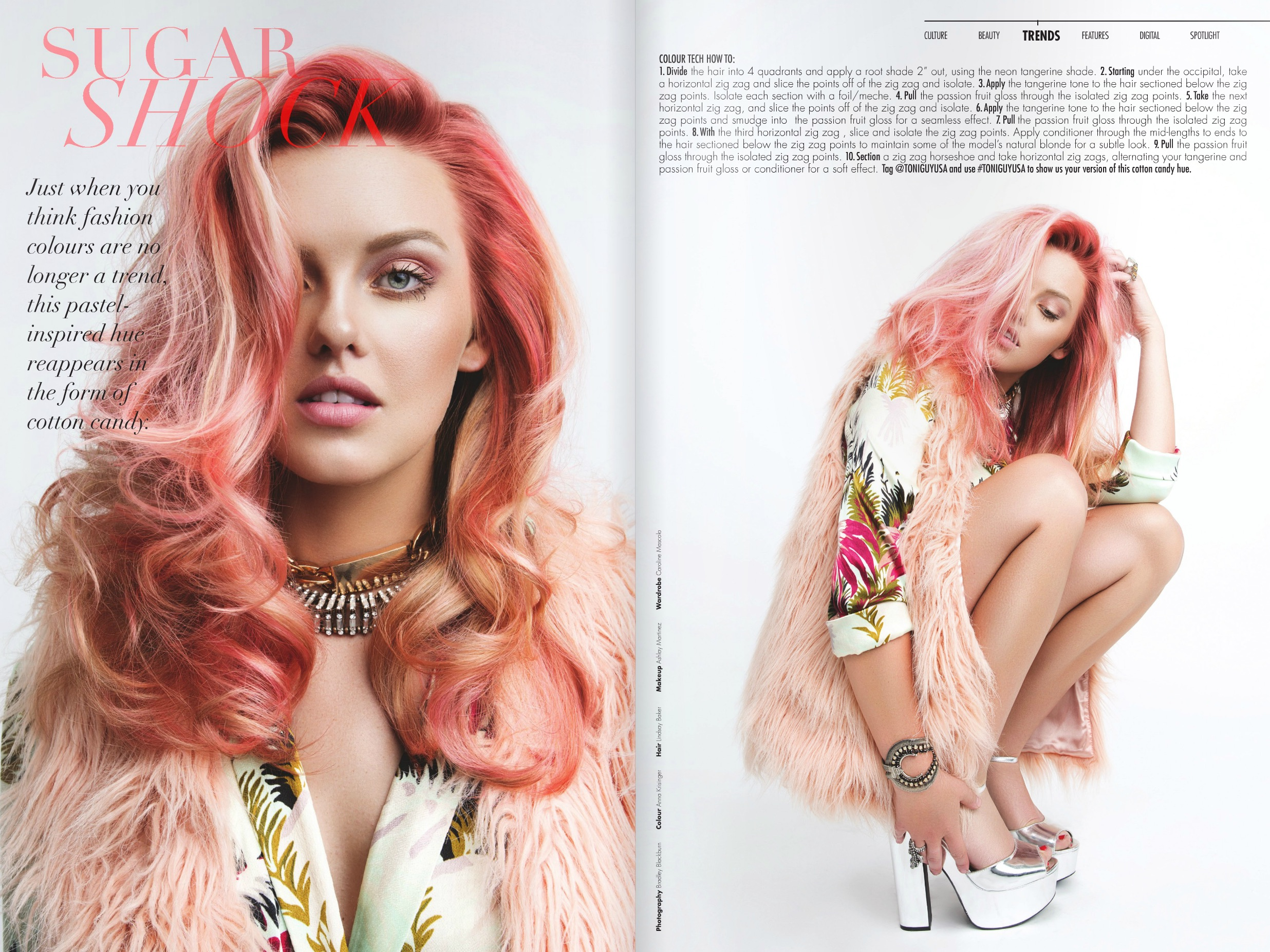 Strut Tear Sheet 2.jpg