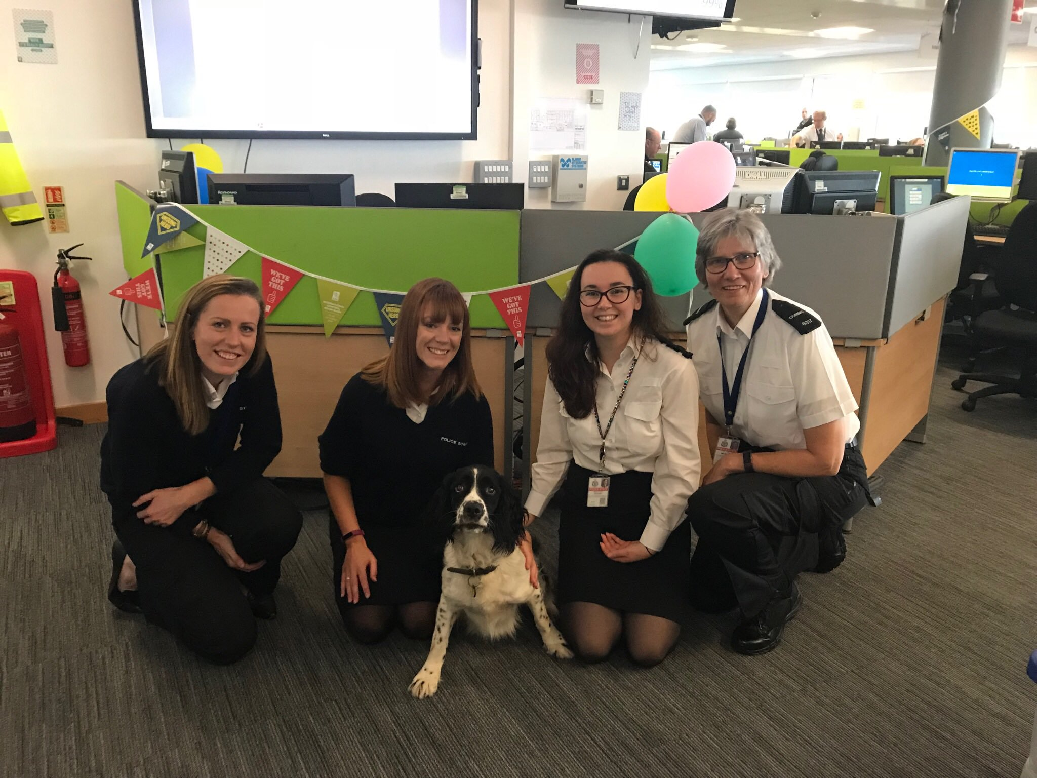police dog rufus visits avon and somerset police control room during international control room week 2018