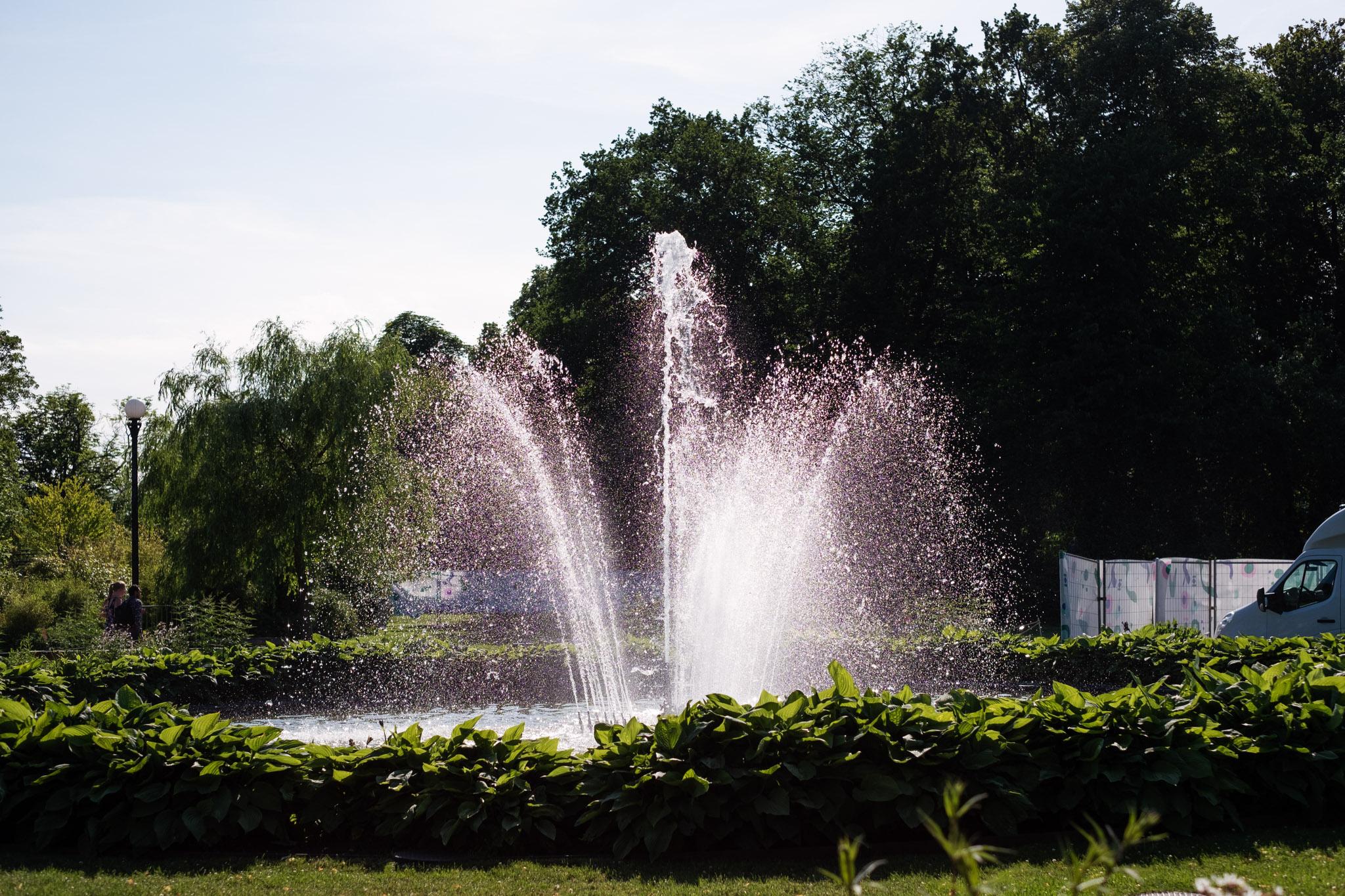 gardenfest_MS027.jpg