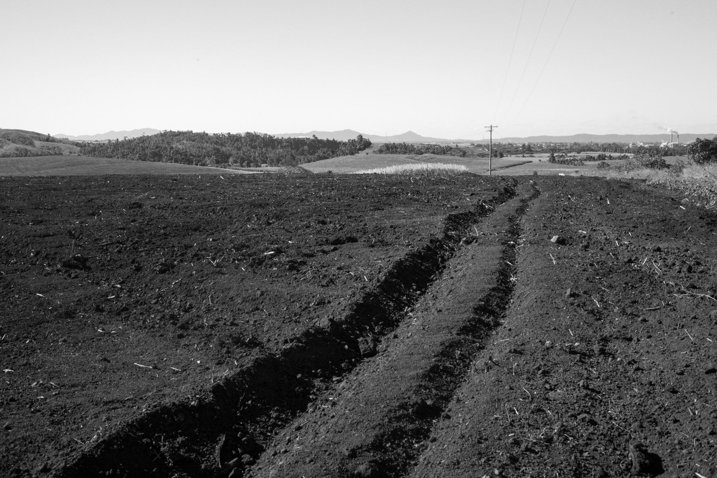 A empty field