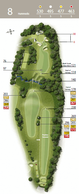 Hummocks - Hole 8 - The Waterfall Golf Course.png