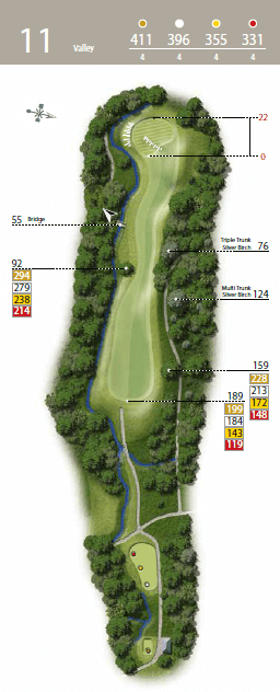 The Valley - Hole 11 - The Waterfall Golf Course.png