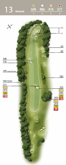 Winterpick - Hole 13 - The Waterfall Golf Course.png