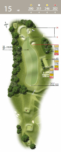 Hill - Hole 15 - The Waterfall Golf Course.png