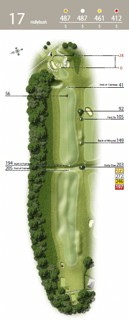 Holly Bush - Hole 17 - The Waterfall Golf Course.png