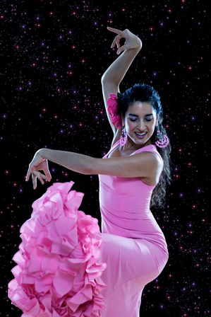 amor-flamenco-get-your-tickets - Copy.jpg