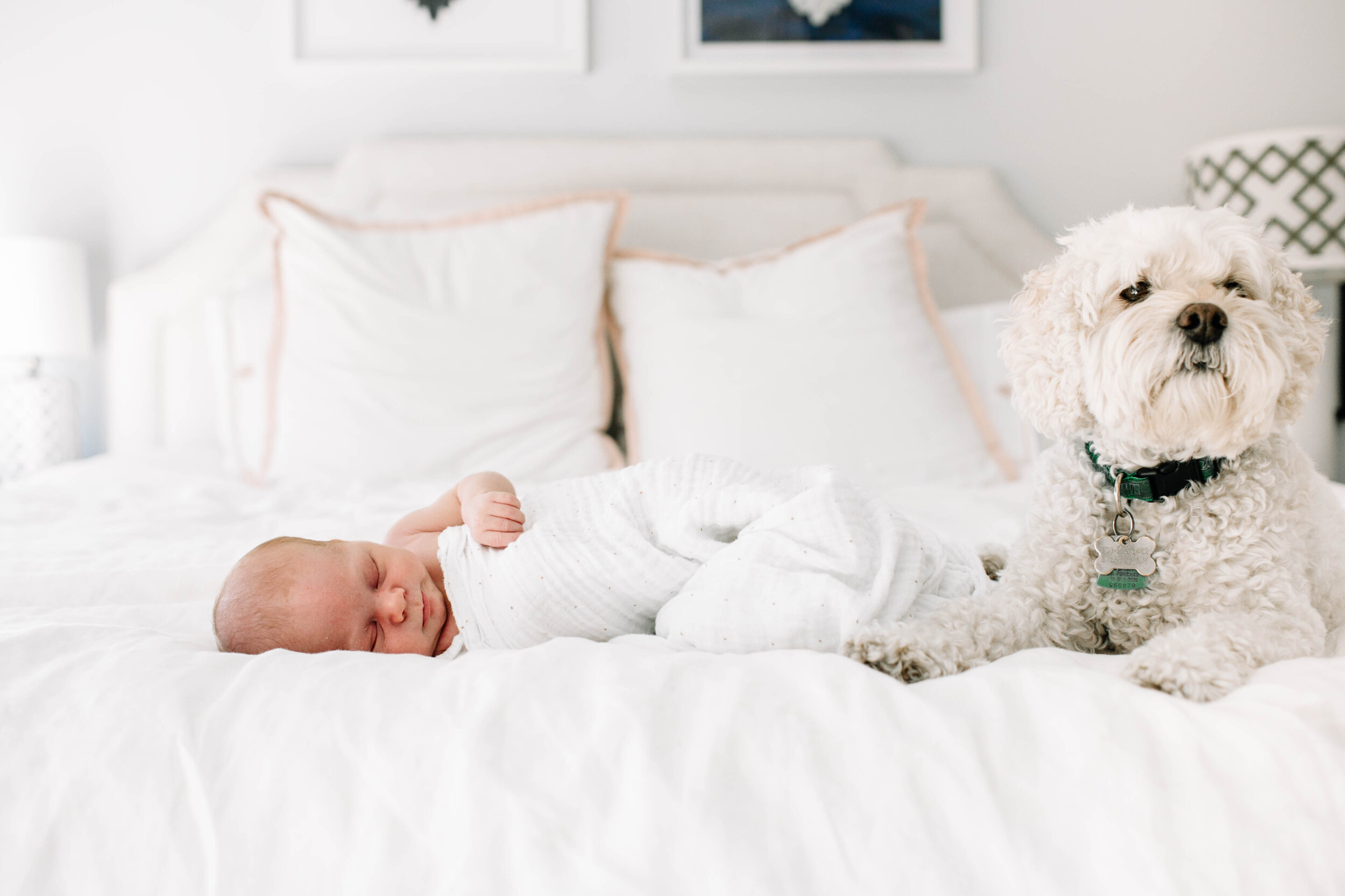 BabyTeddy_CassandraPhoto-192.jpg
