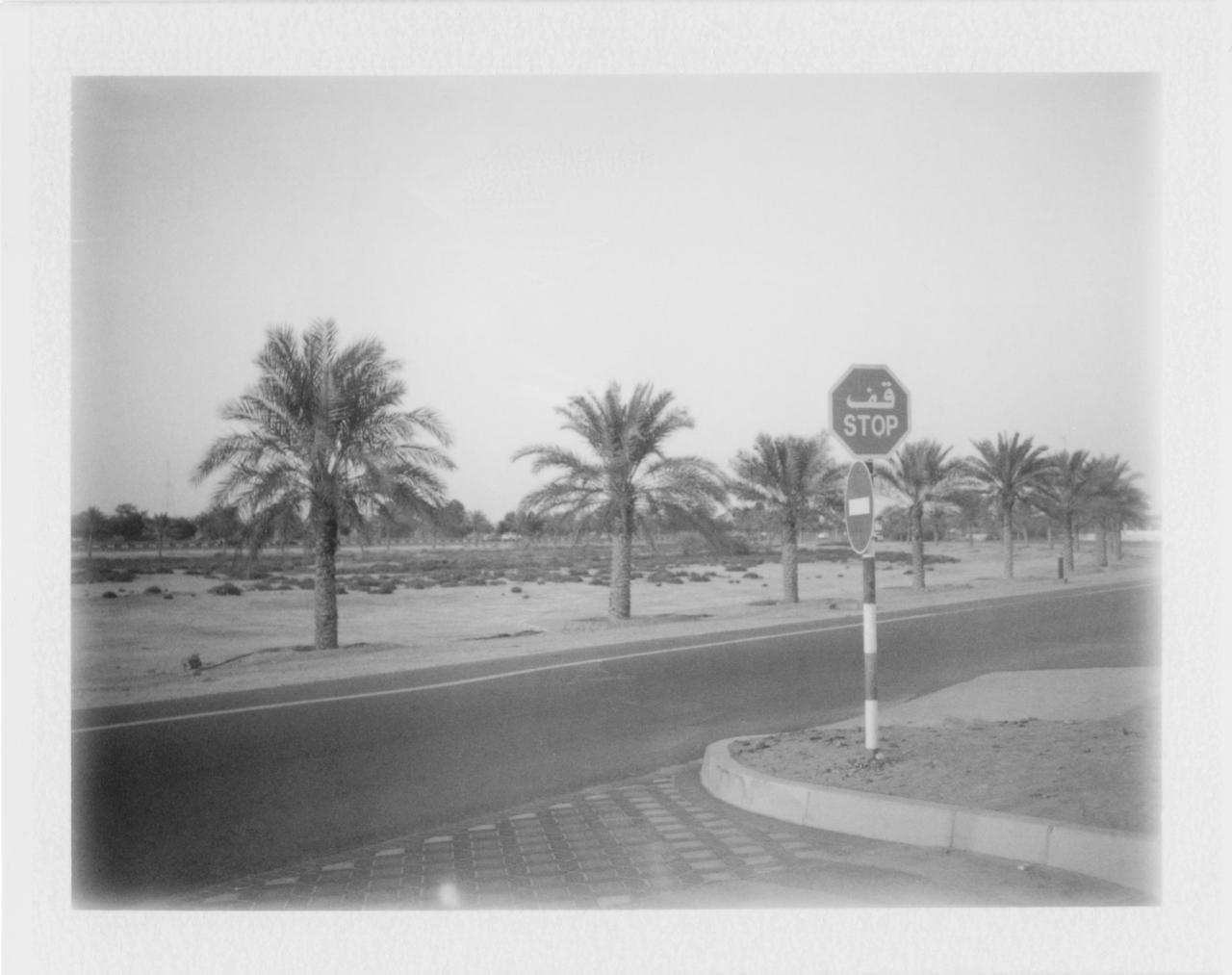 UAE Cyrus M - 3.jpg