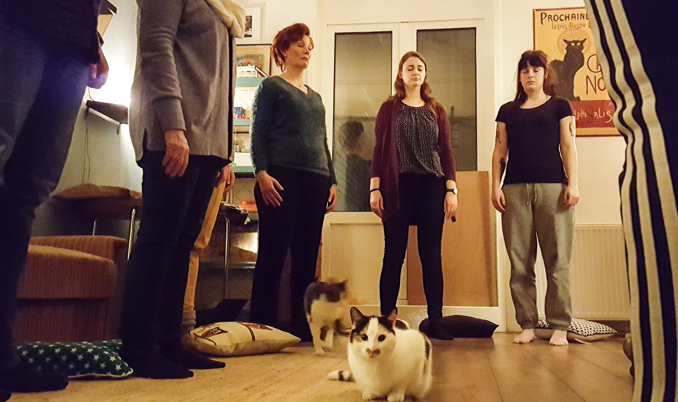 Kattencafé-4.jpg