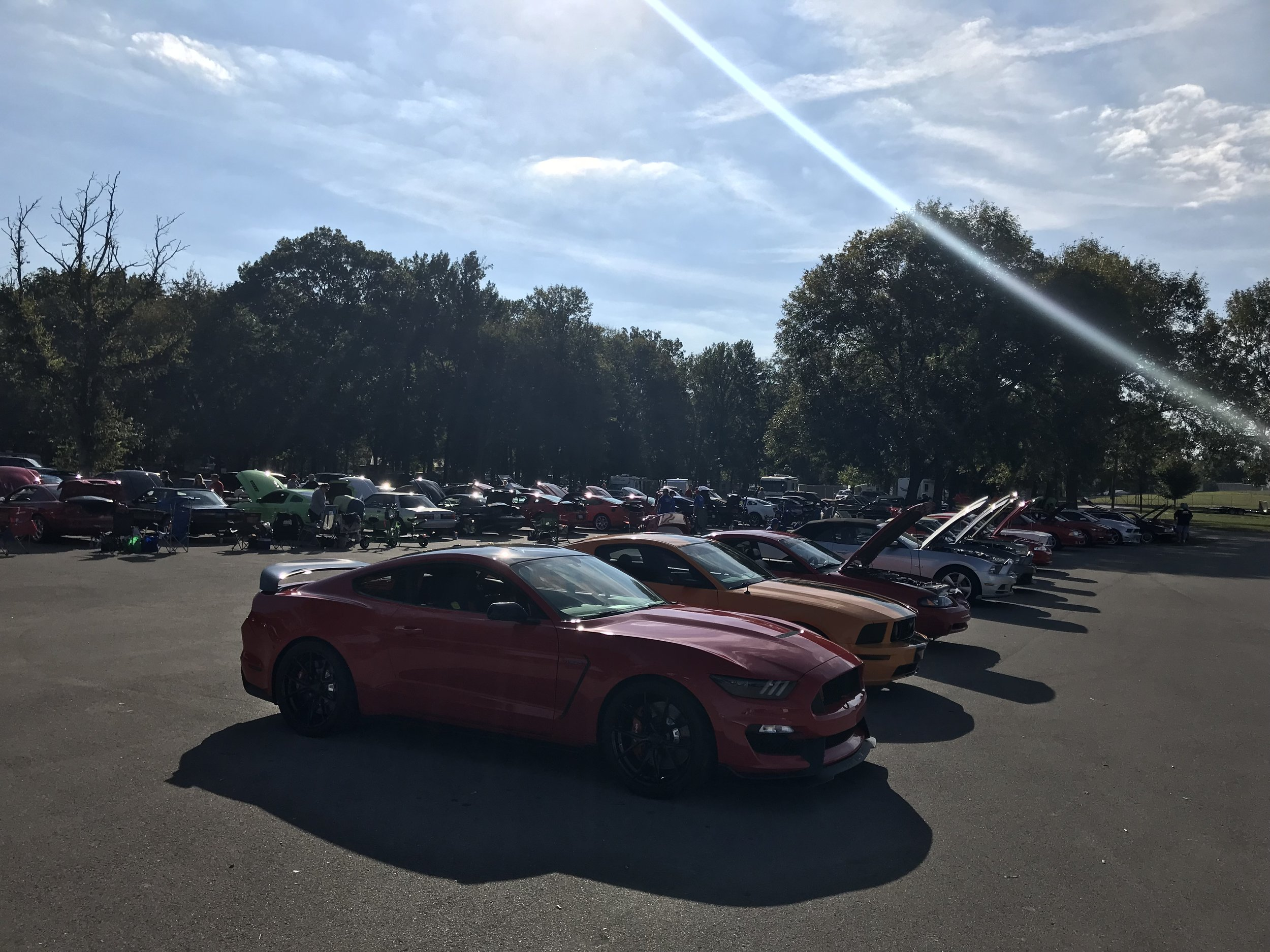 Every Ford vehicle imaginable was on display in the car show. From classics to brand new GT350s.